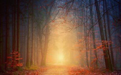 Spiritualität und Mensch sein